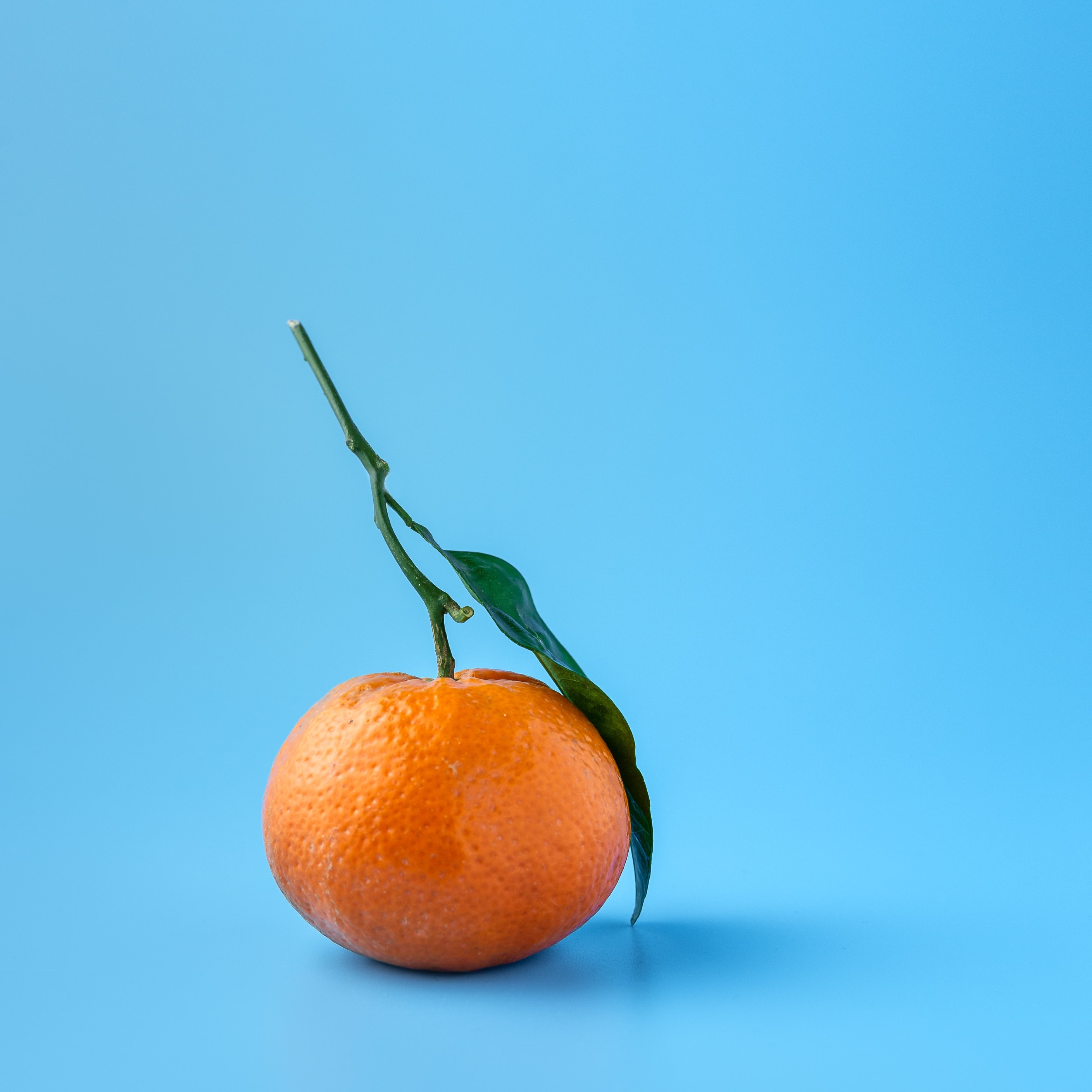 simple orange on blue background